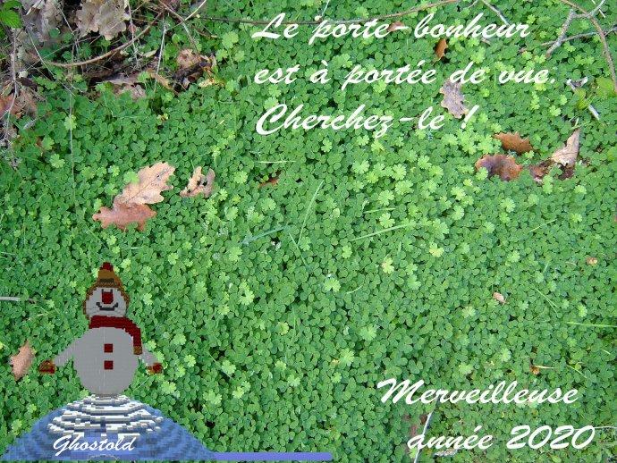 1577823598_un_brin_porte-bonheur_a_trouver_pour_mindicraft.jpg